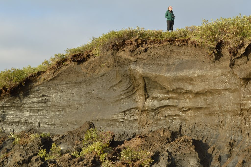 A student stands atop a large hillside which is eroded away at the sides to expose the permafrost at the western Arctic coast.