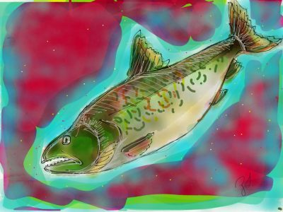 Zoe Todd's artwork of a salmon in greens, blues and pinks
